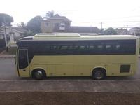 Golden Dragon Bus 2007