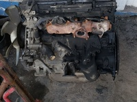 scopping zd30 engine and transmission