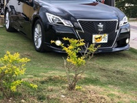 Toyota Crown 2,5L 2013