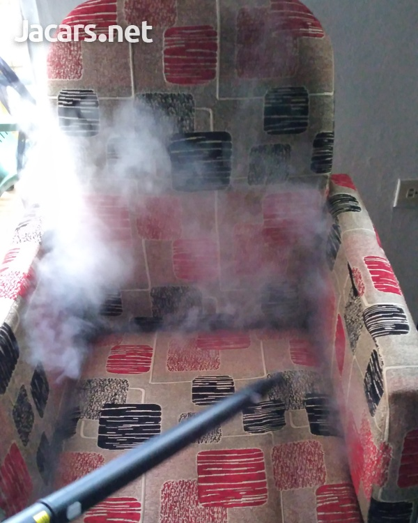 Mobile Steam Cleaning-6