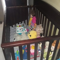 Delta Crib and Sealy Mattress