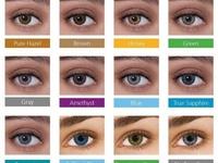 Signature Eyewear fashion contacts