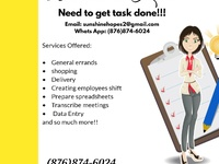 errands, virtual and personal assistant