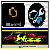 DTC Removal removing it via ECU permanently