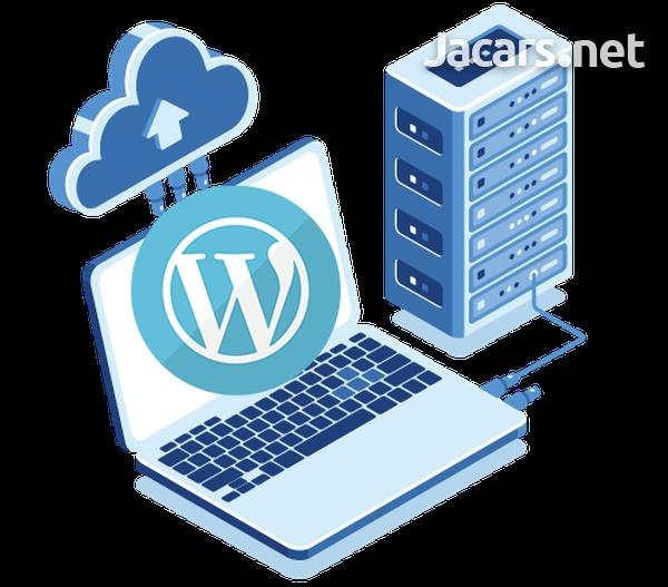 Website design, Hosting service and Logo Design-9