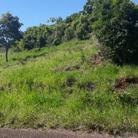 1/3 Acre of Land