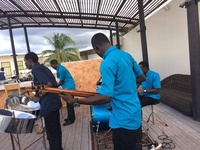 Steal Band and Reggea band Services