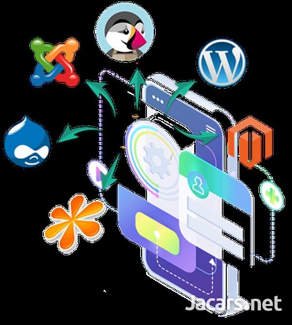 Website design, Hosting service and Logo Design-10