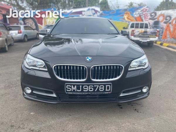 BMW 5-Series 2,0L 2013-1