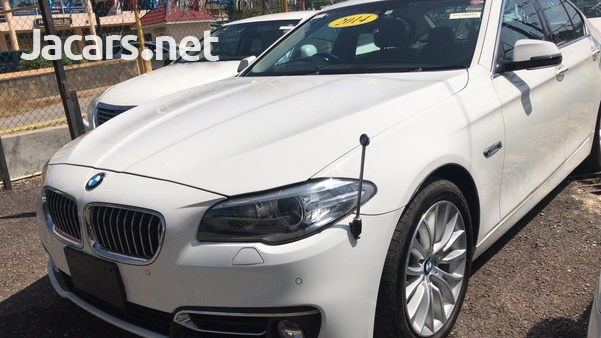 BMW 5-Series 3,0L 2014-3