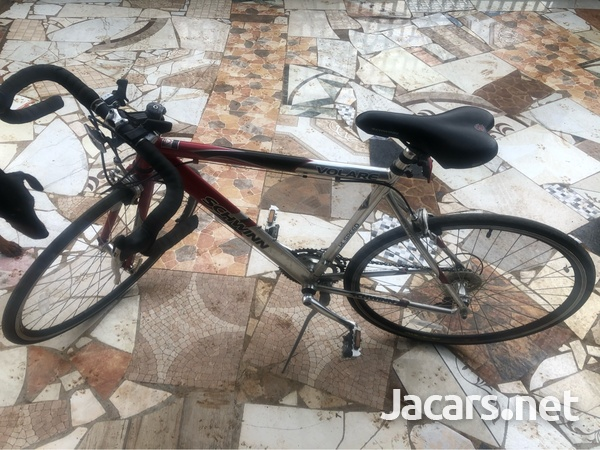 Schwinn Aluminum Bicycle-2