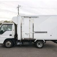2006 Isuzu Elf Freezer Truck
