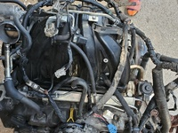 grand vitara engine