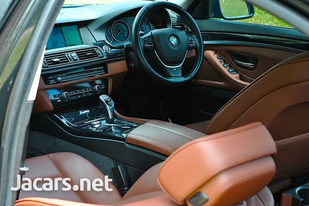 BMW 5-Series 2,0L 2013-13