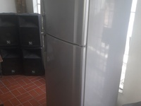 13.1 cu. Ft Sharp Refrigerator