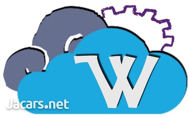 Website design, Hosting service and Logo Design-1