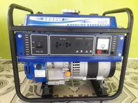 Tool Shed gasoline generator