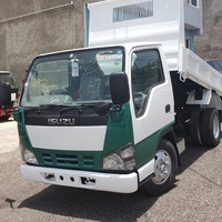2007 Isuzu Elf High Deck Dump 3.0ton Truck