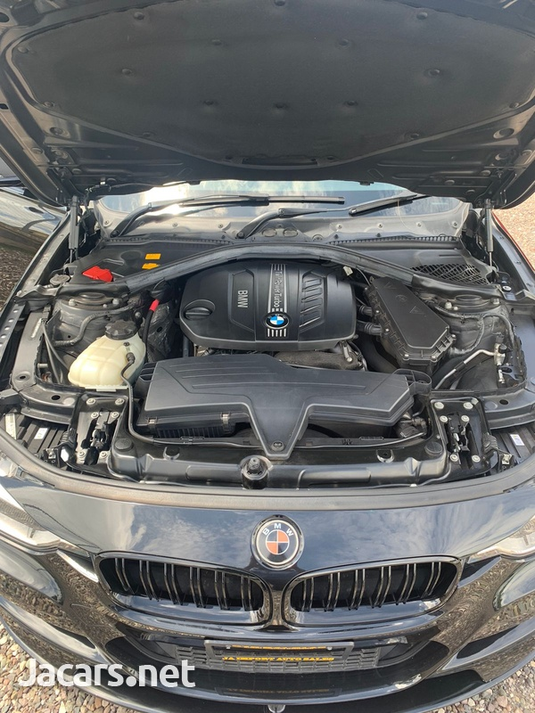 BMW 3-Series 2,0L 2013-5