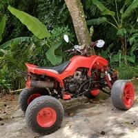 2018 250cc ATV QUAD BIKE