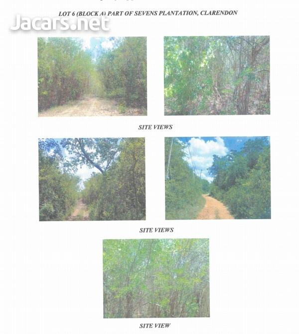 12 Acres of Land Lot 6a Seven Plantation Clarendon-2