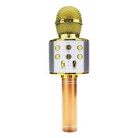 Portable Bluetooth Karaoke Microphone