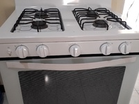 Electric gas stove