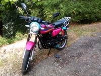 Pink 200ZJ