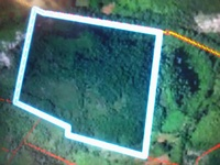 12 acres of farm land for lease