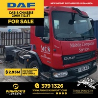 DAF Cab and Chassis 2009 12.5T